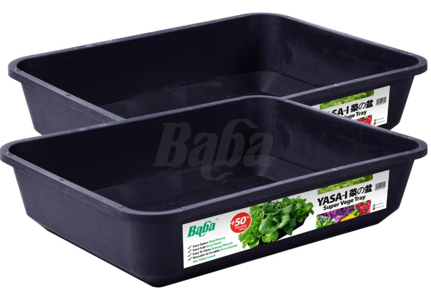 grow varieties of space saving vegetables in Singapore