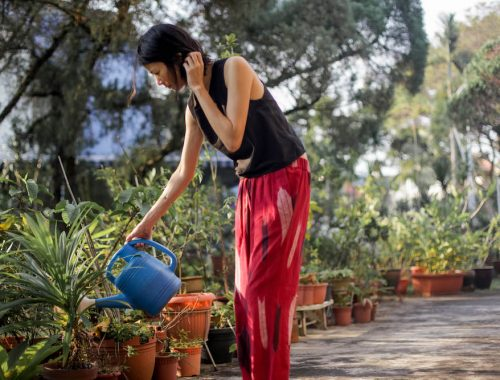 water-wise gardening techniques